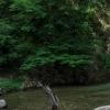 cascate bivongi